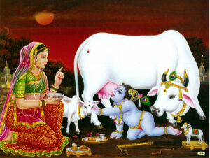 Krishna as a baby with the cows