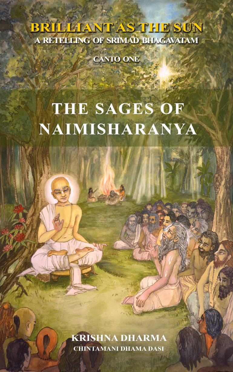 Book cover Sages of Naimisharanya